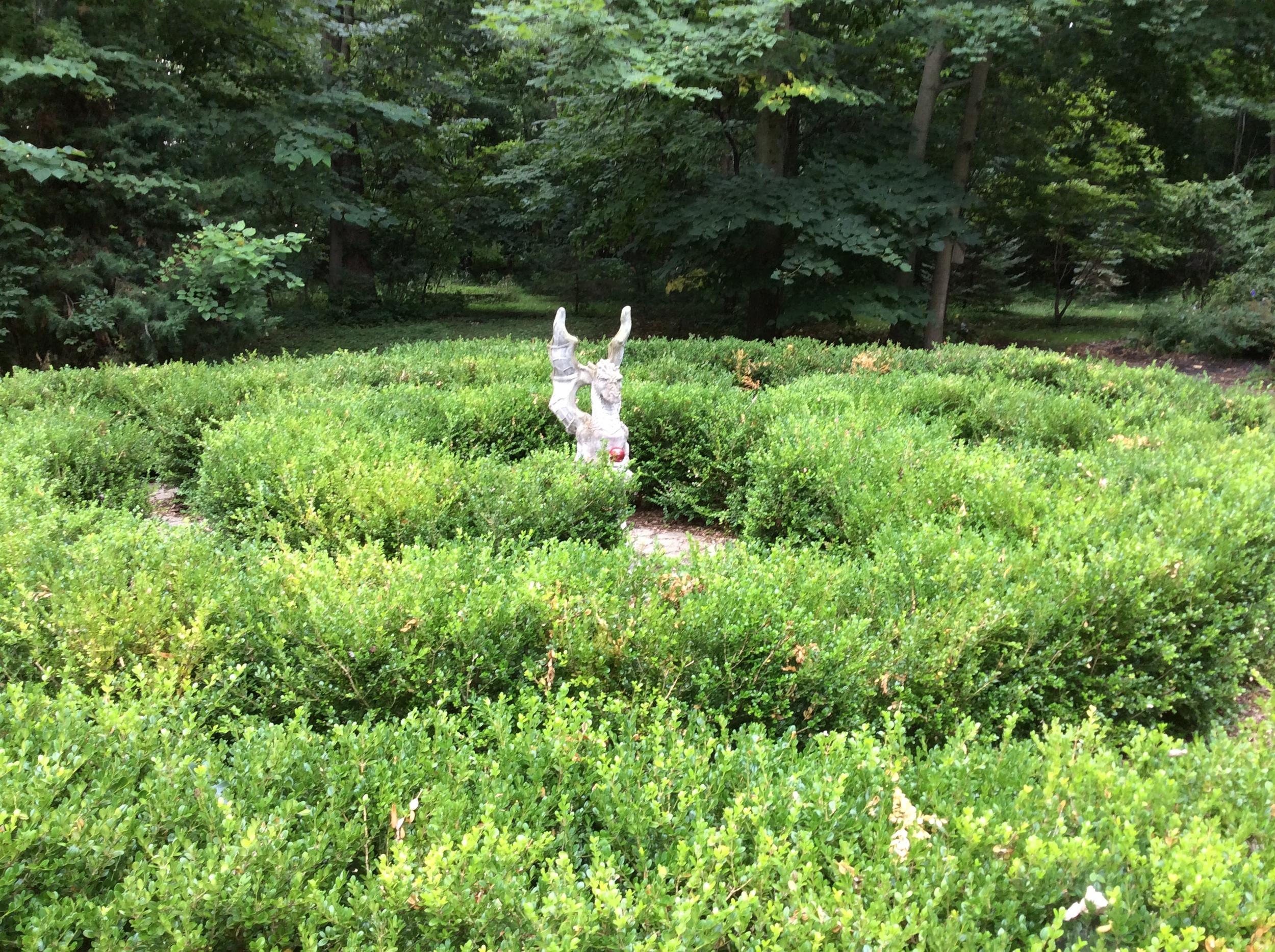 A maze in the backyard