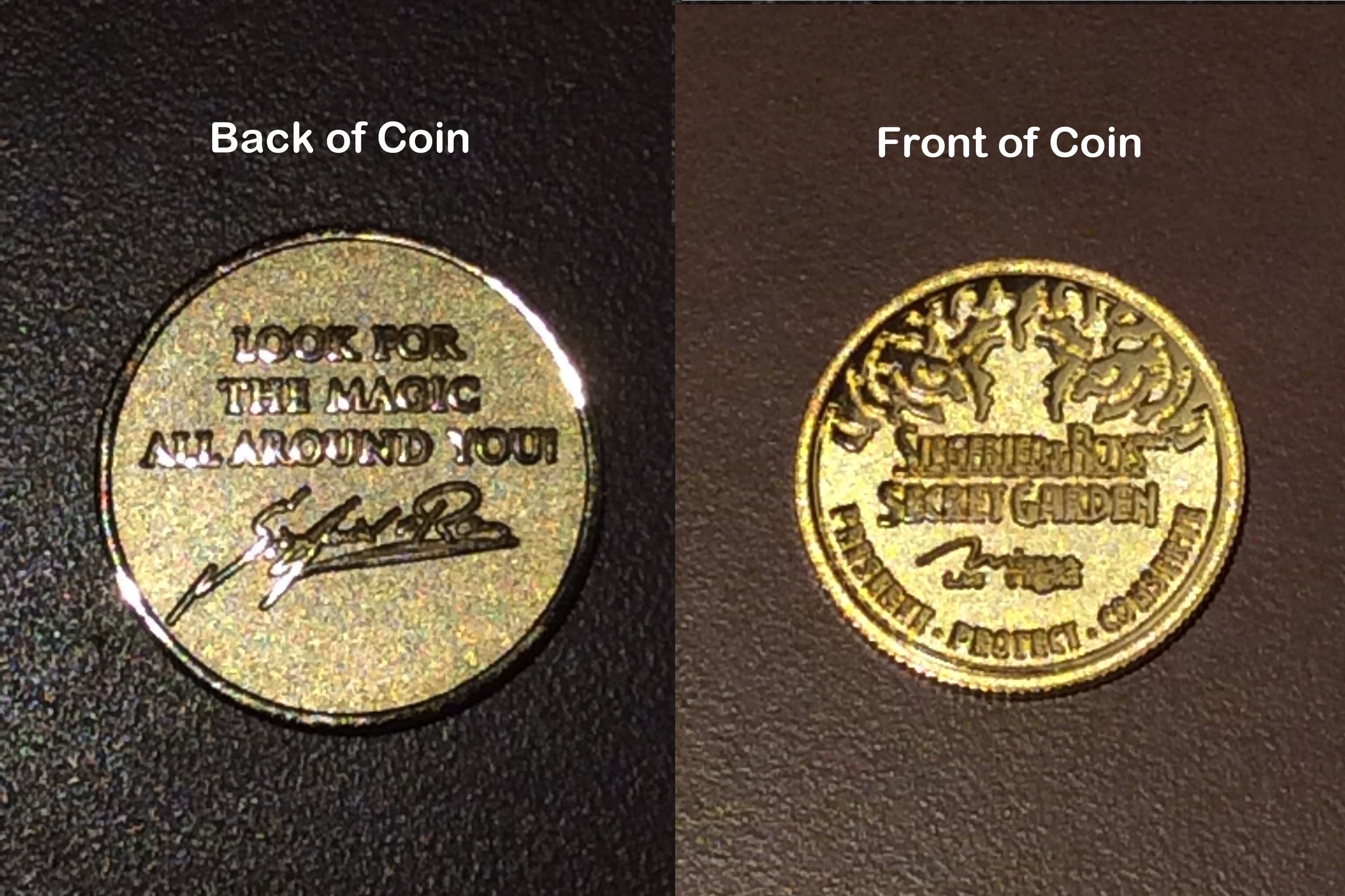 Coin given to Tessa by Siegfried