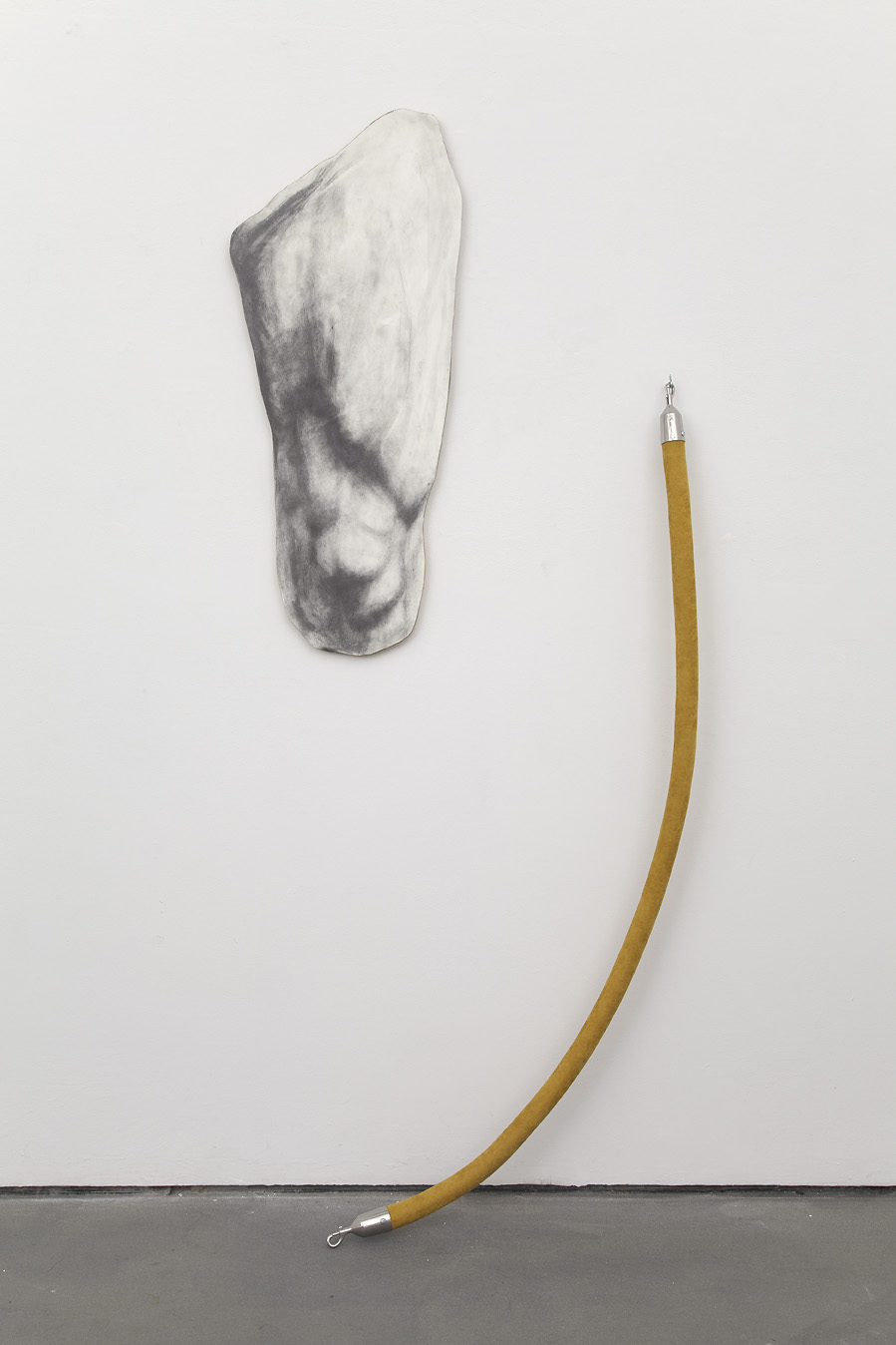 Untitled  , 2013. Graphite on paper mounted on plywood, velvet rope. Dimensions variable (rope 72 in.).