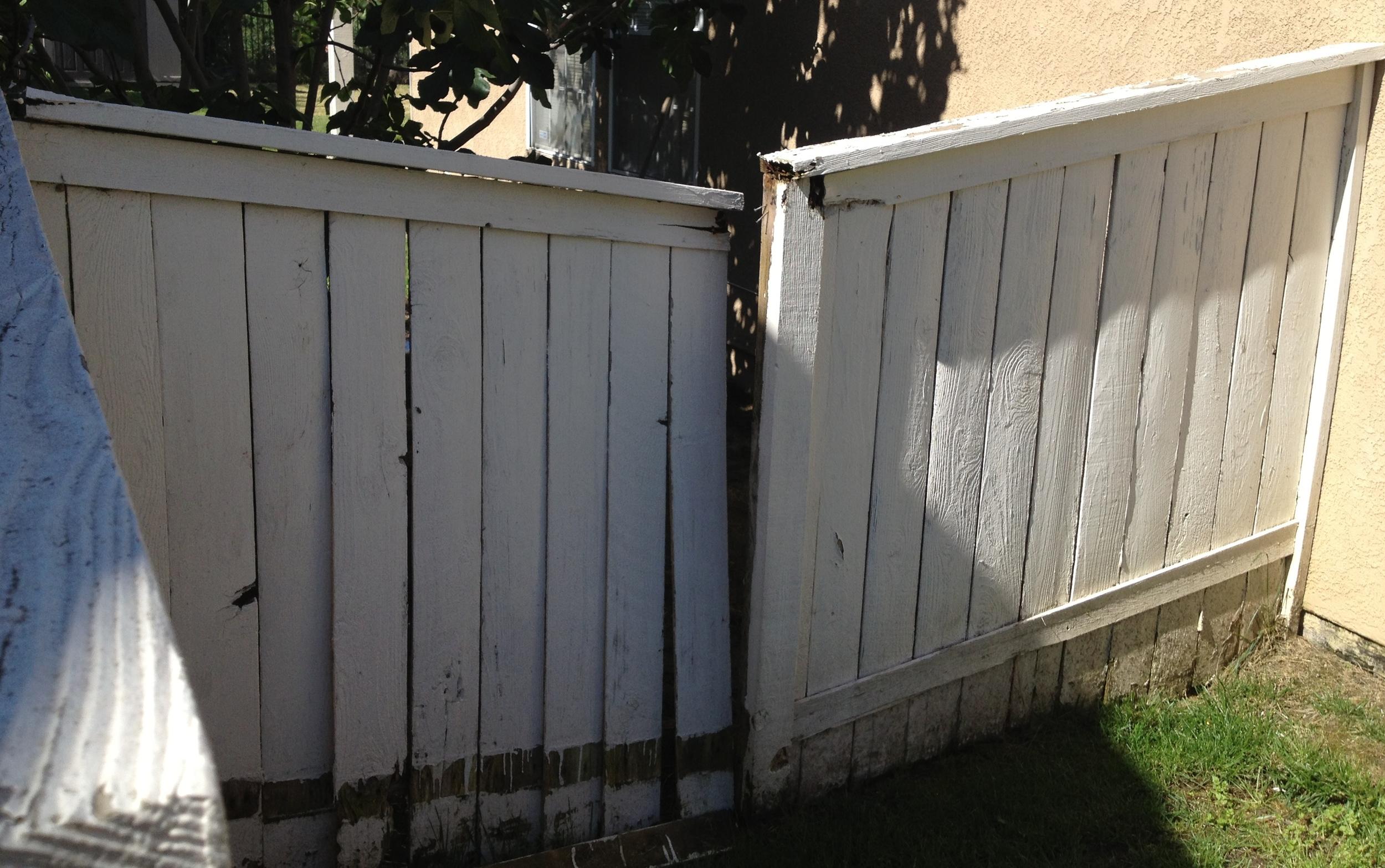 fence before.JPG