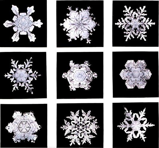 mandala - snowflakes.jpg