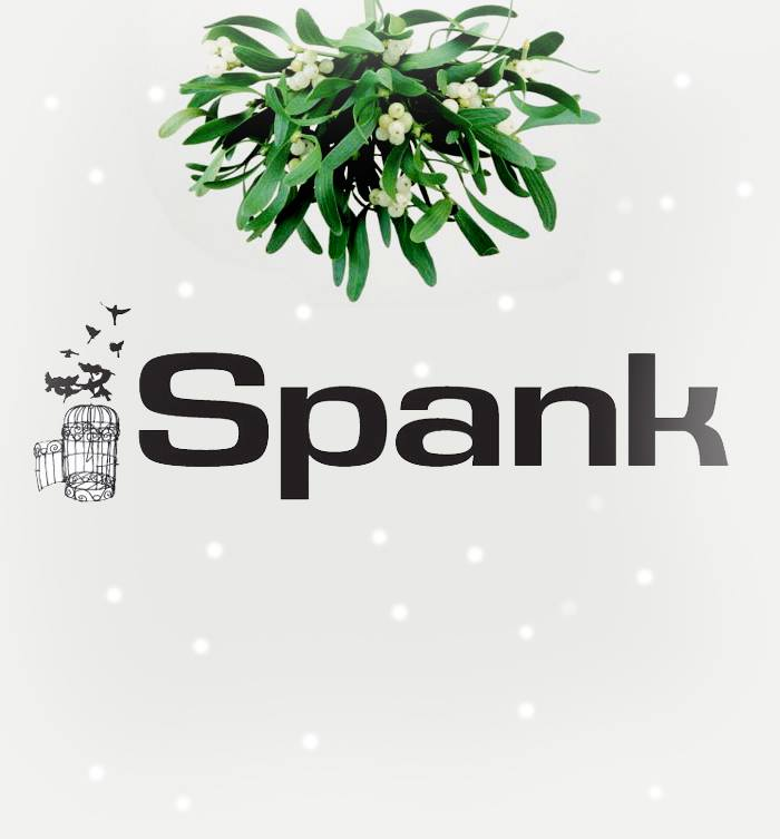 2013-12-13 Spank Clothing.jpg