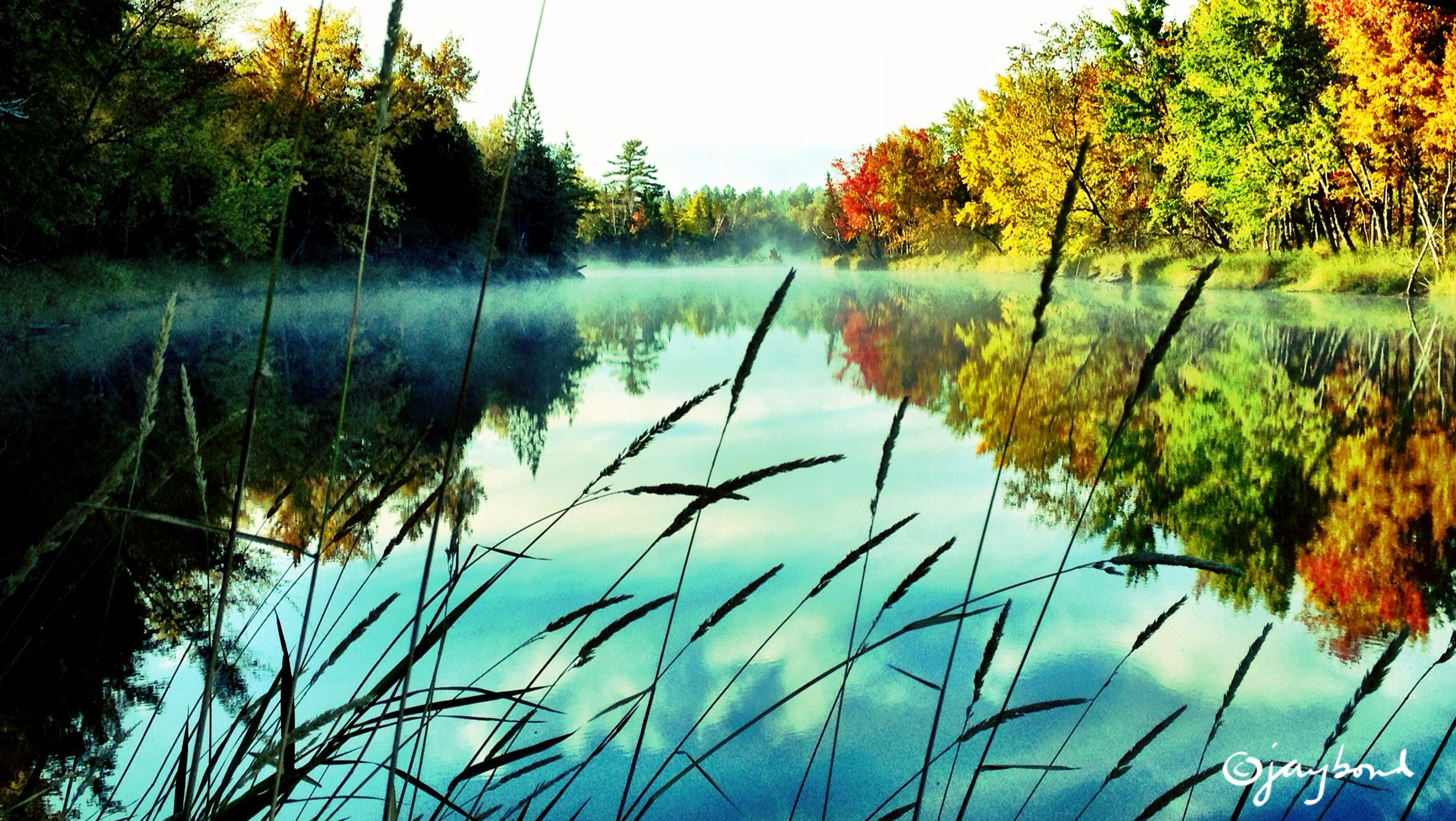 Killarney Provincial Park.