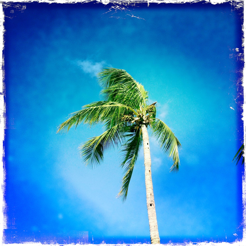 Vacation.
