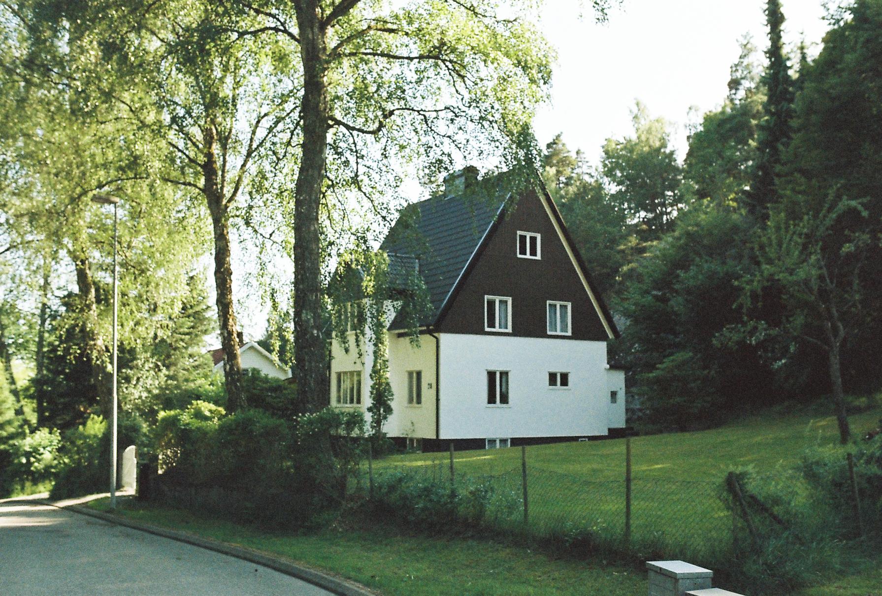 swedish-midsommar-2018-35mm-90.jpg