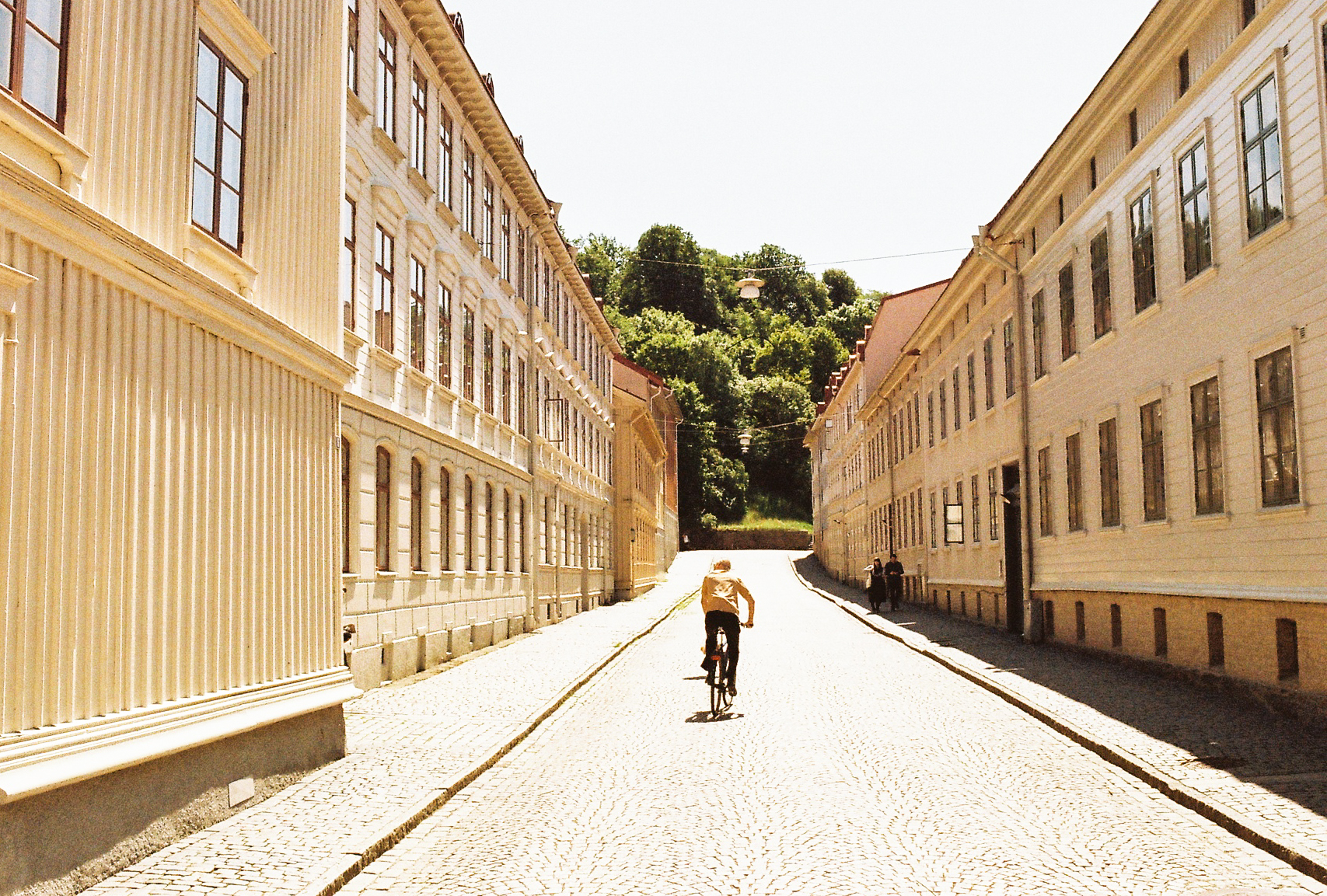 swedish-midsommar-2018-35mm-93.jpg