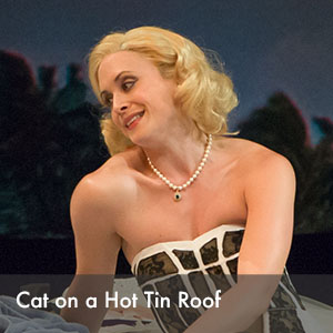 cat on a hot tin roof.jpg