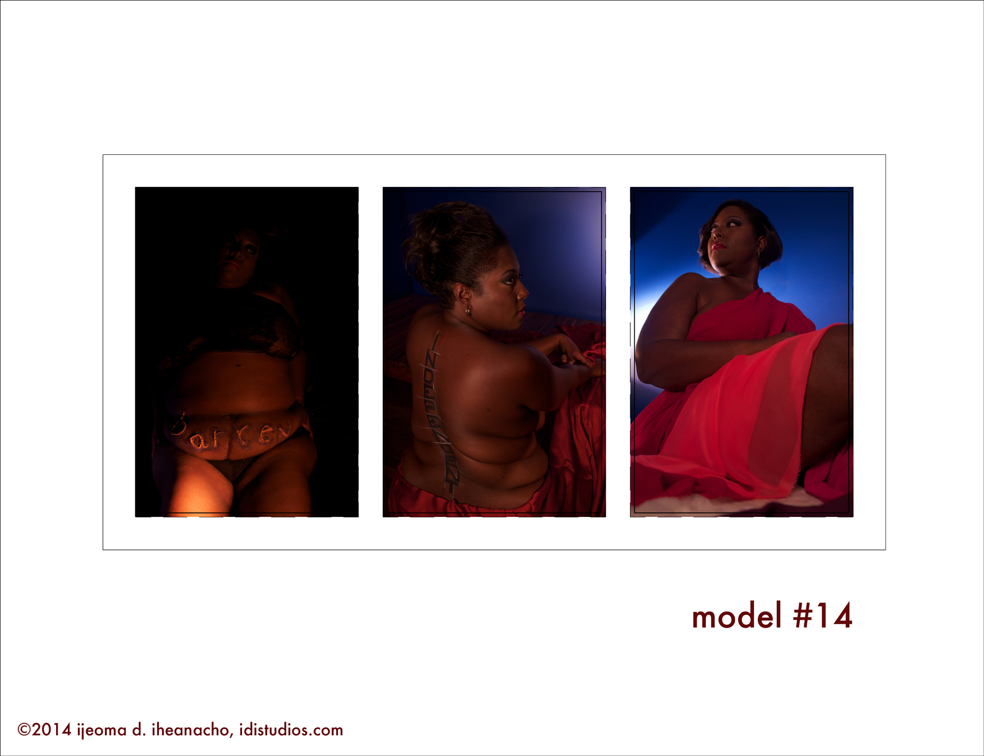 the reImagining Series: Model #14 Gallery Plate