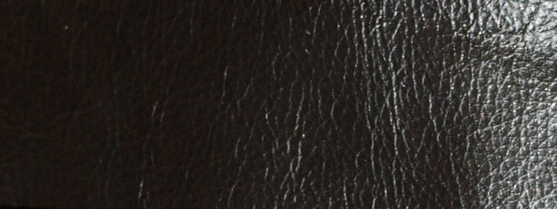 Dark Brown Leather L00