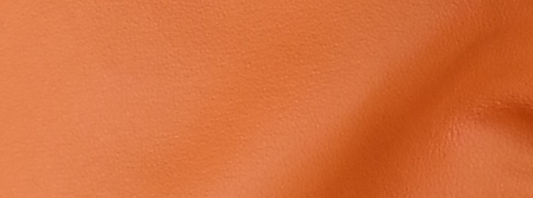 Orange Leather L22