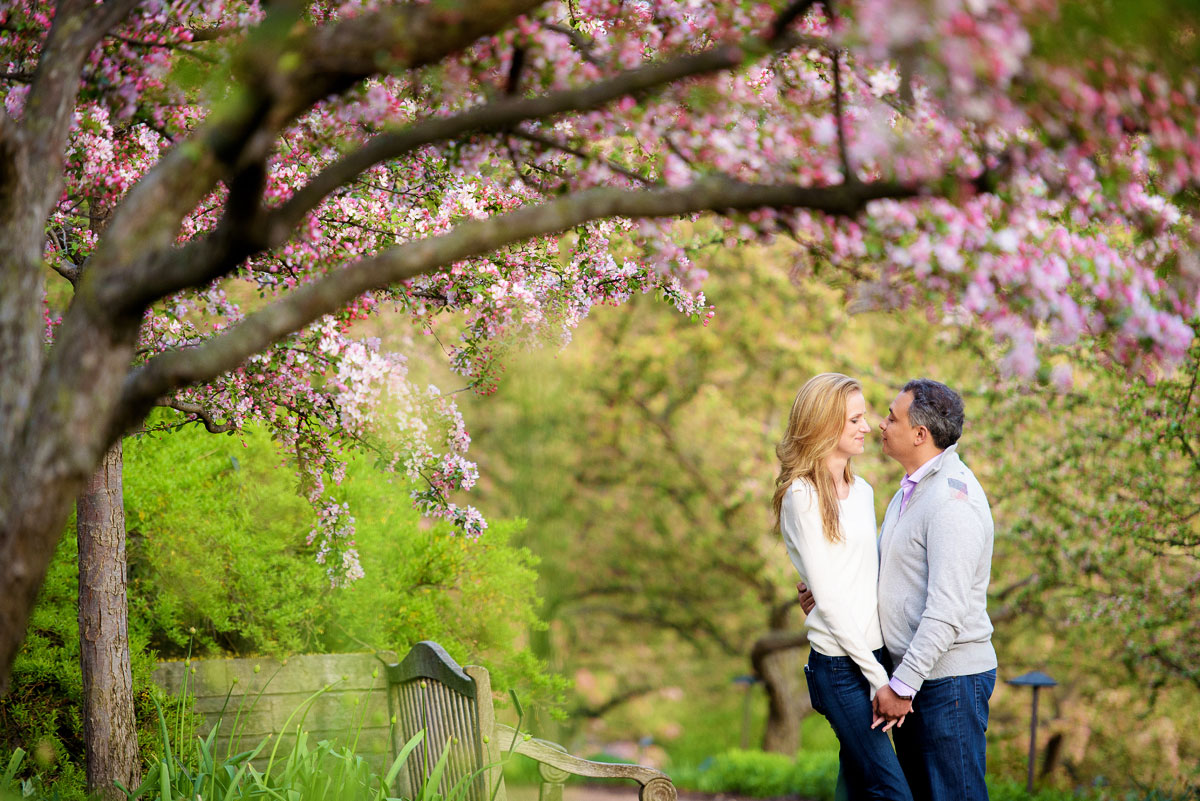 Chicago Botanic Gardens Engagement Photos Evie Ameer Chicago
