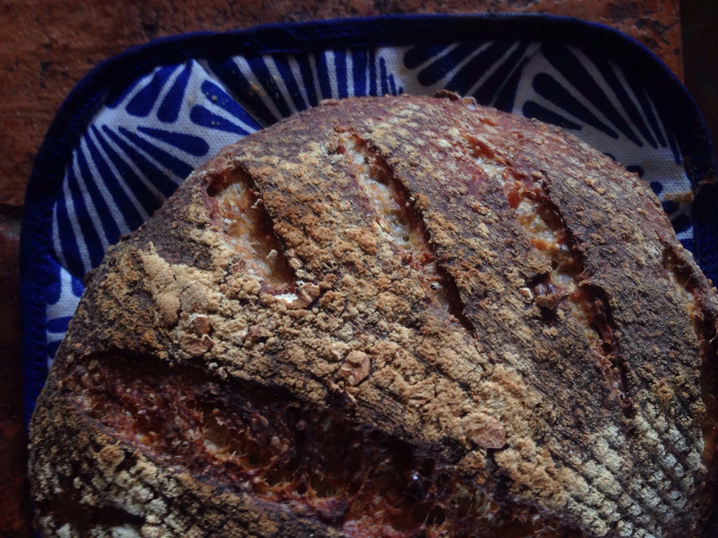 A crunchy loaf full of sprouted quinoa, chia, and amaranth as well as soaked oats and barley and pre-gelatinized corn.  Baked in a ceramic vessel in Cuenca, Ecuador.