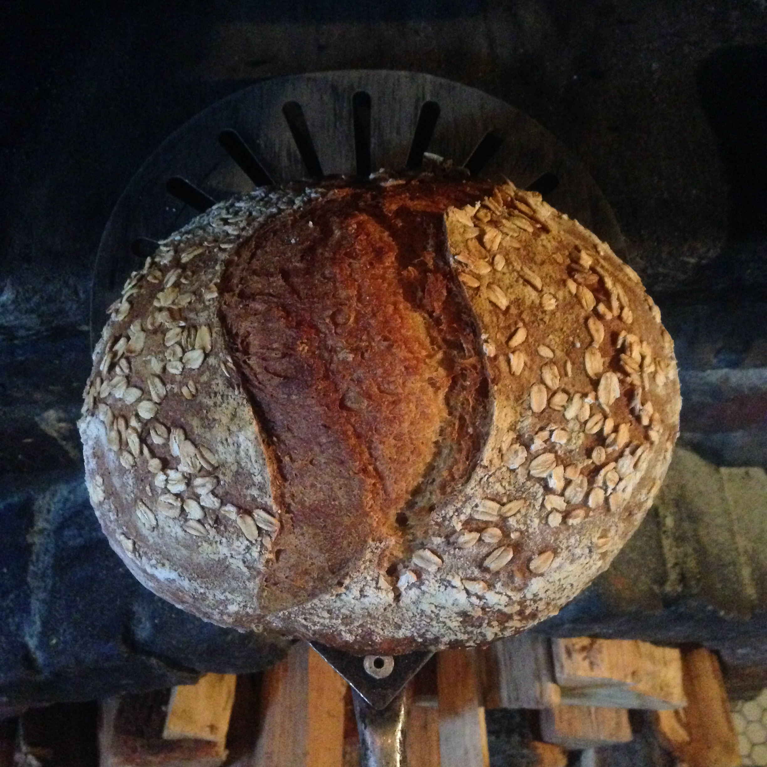 A loaf of Tartine 3-inspired Sprouted Kamut and Oat, the first from the wood-fired oven.