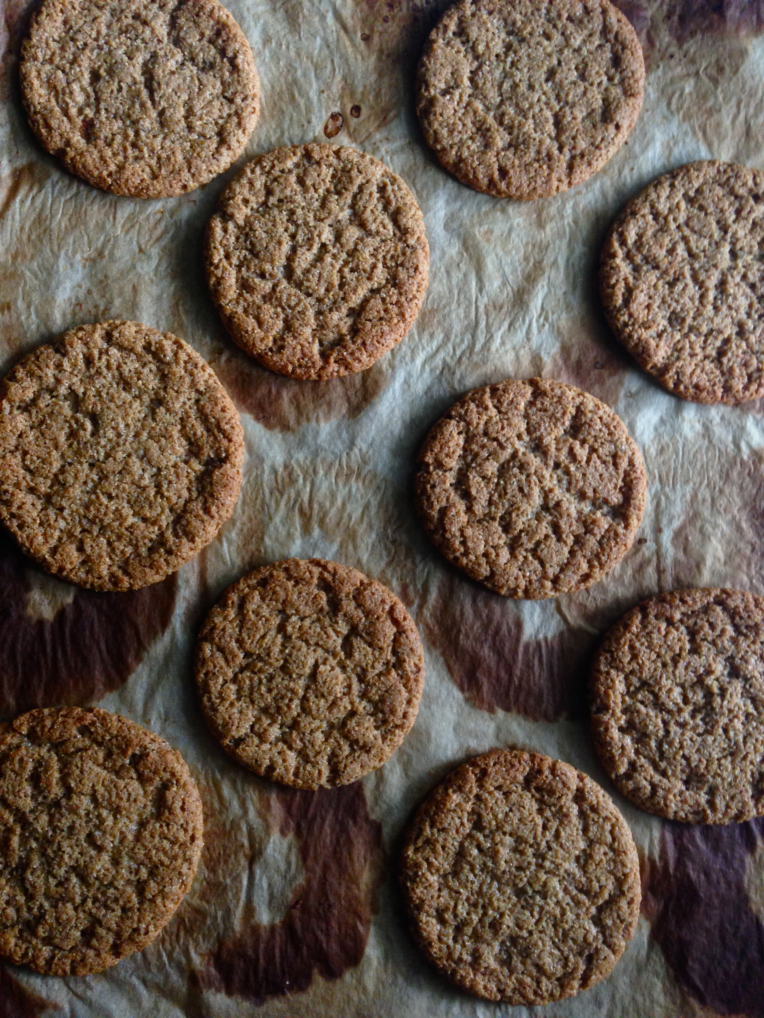 Chewy Sorghum Spice Cookies baked on recycled parchment paper.