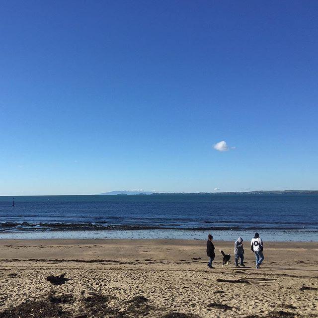 Enjoying the winter sun ☀️ #milfordbeach #auckland #newzealand #wintersun #feelinggrateful