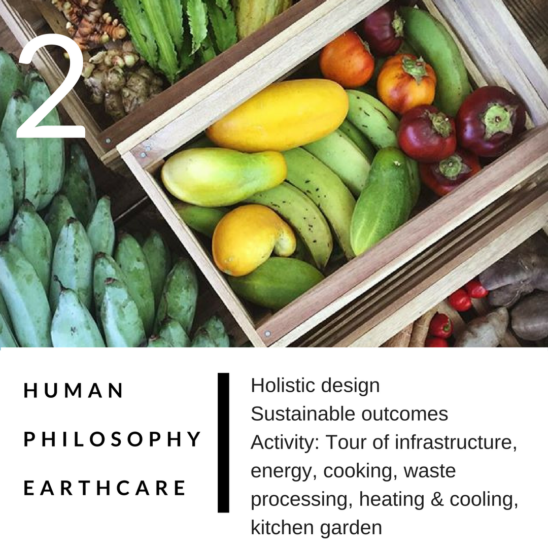 PERMACULTURE DESIGN COURSE IN DETAIL 2