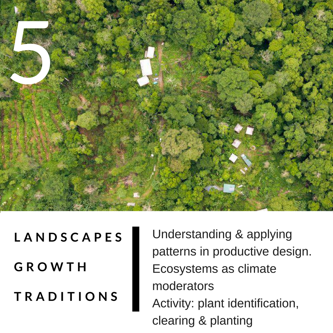 PERMACULTURE DESIGN COURSE IN DETAIL 5