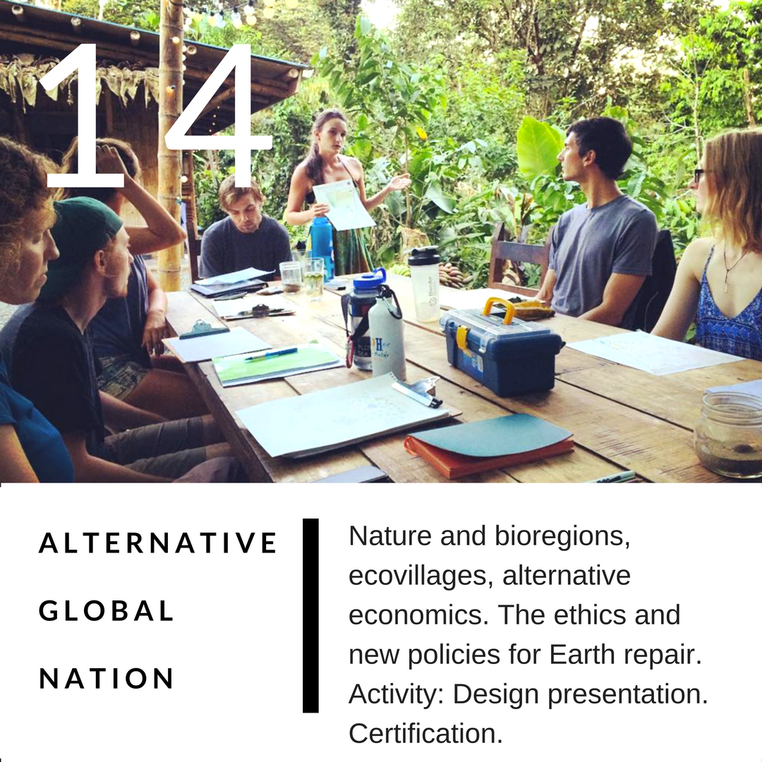 PERMACULTURE DESIGN COURSE IN DETAIL 14