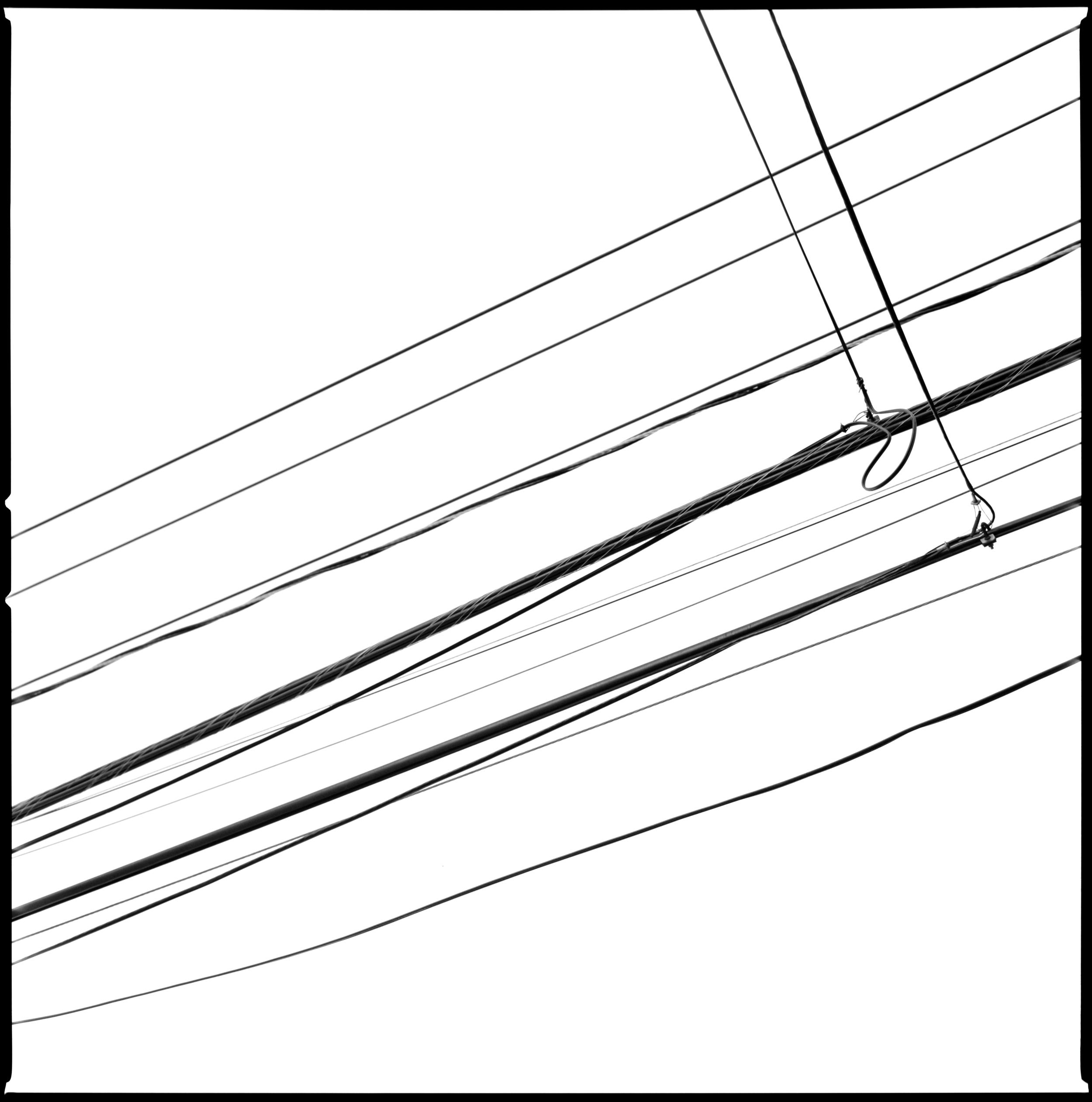 Wire Sketch #16