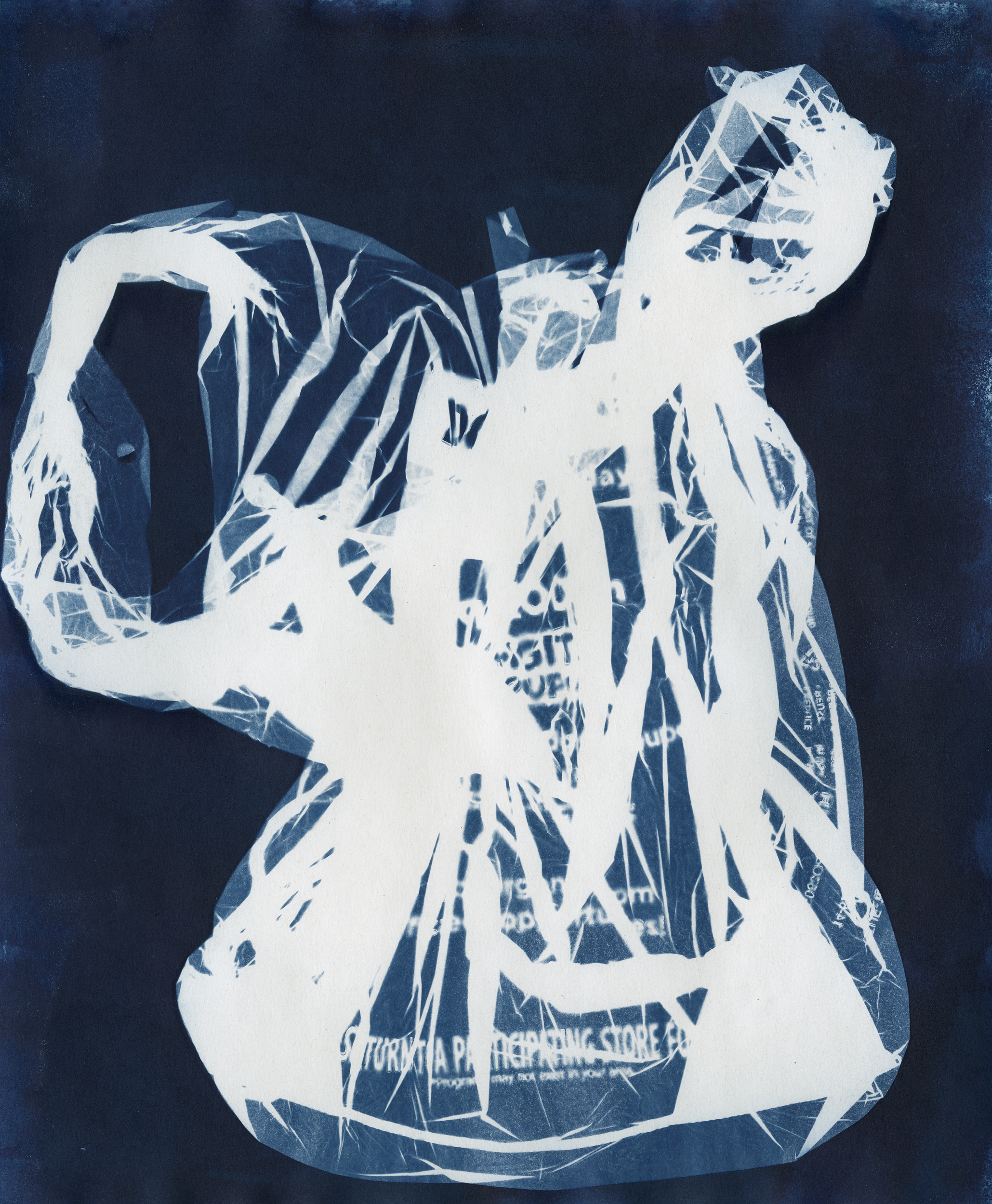 Ellenwood_Cyanotype_ (5).jpg