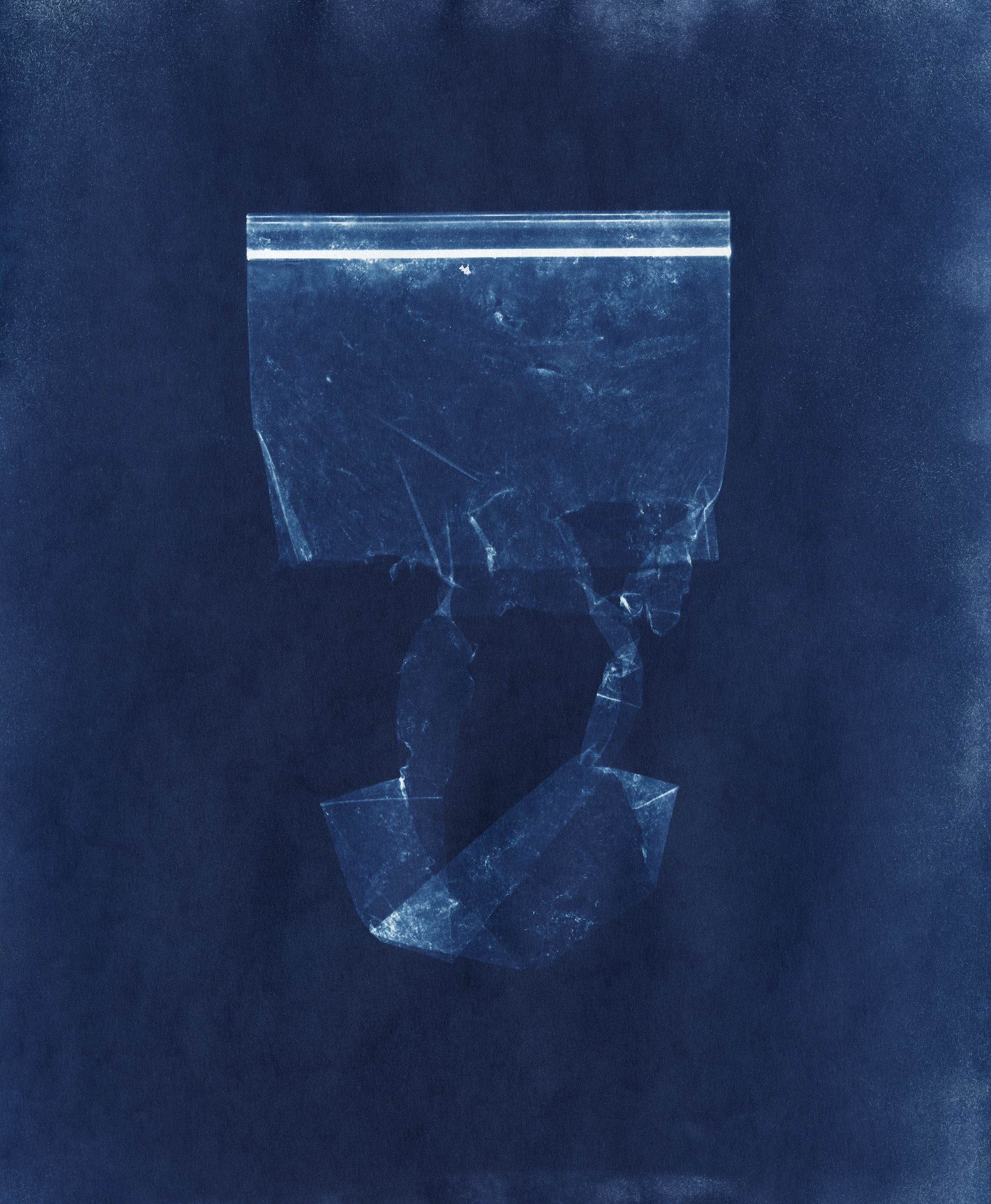 Ellenwood_Cyanotype_ (3).jpg