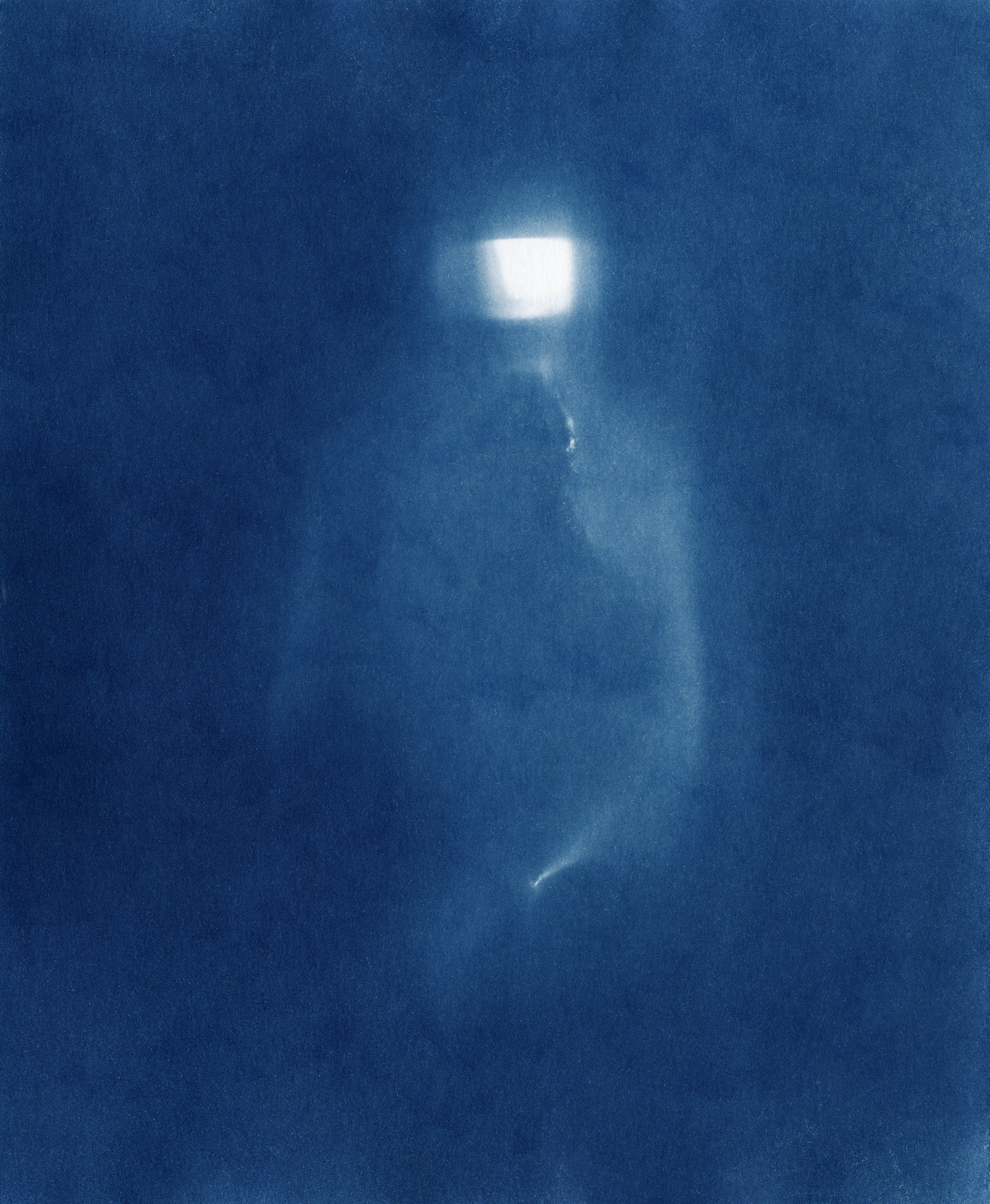 Ellenwood_Cyanotype_26.jpg