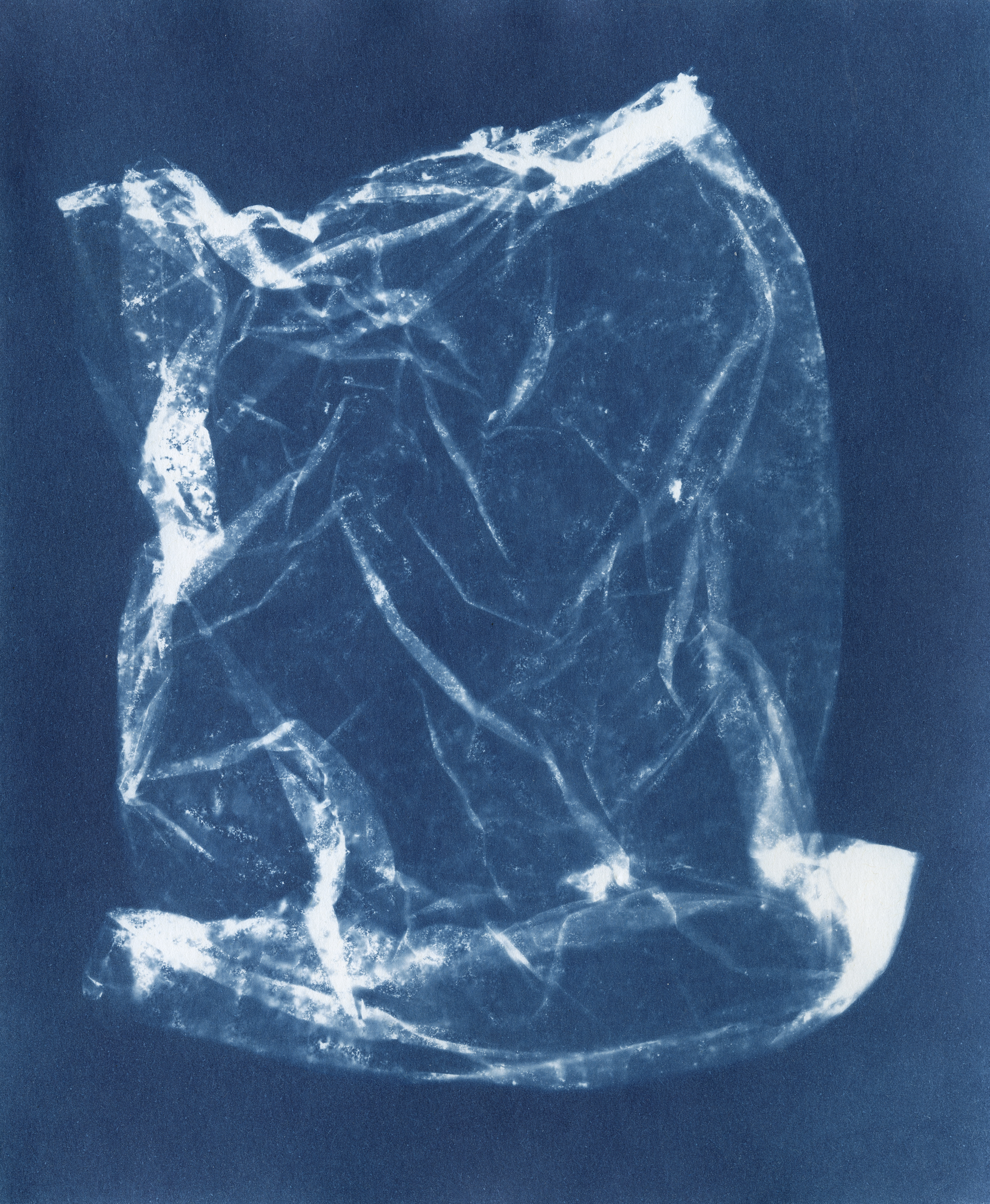 Ellenwood_Cyanotype_27.jpg