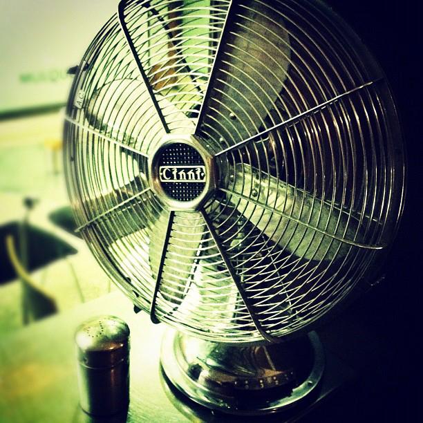 fan from madamebonbon.jpg