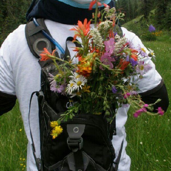 backpack bouquet todaysnest.jpg