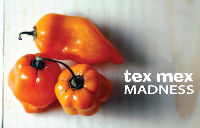 tex-mex-medley5.jpg