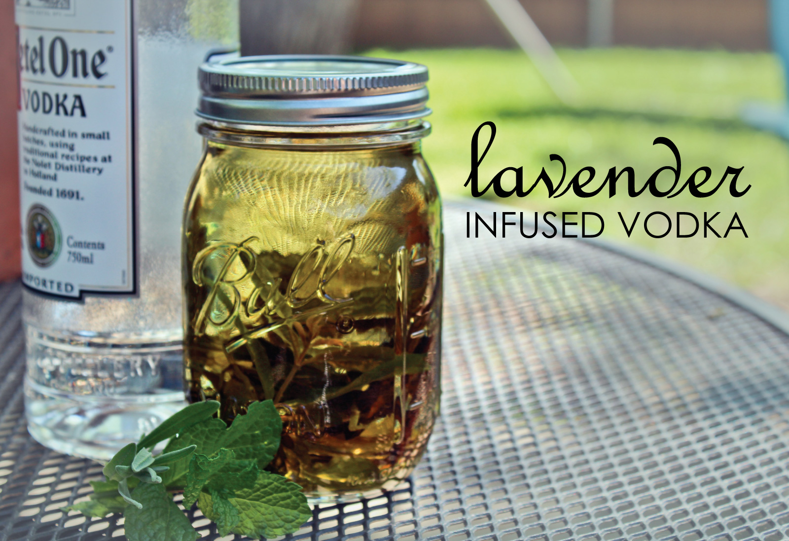 Lavender Infused Vodka. Story and photo by Andrew Yenne