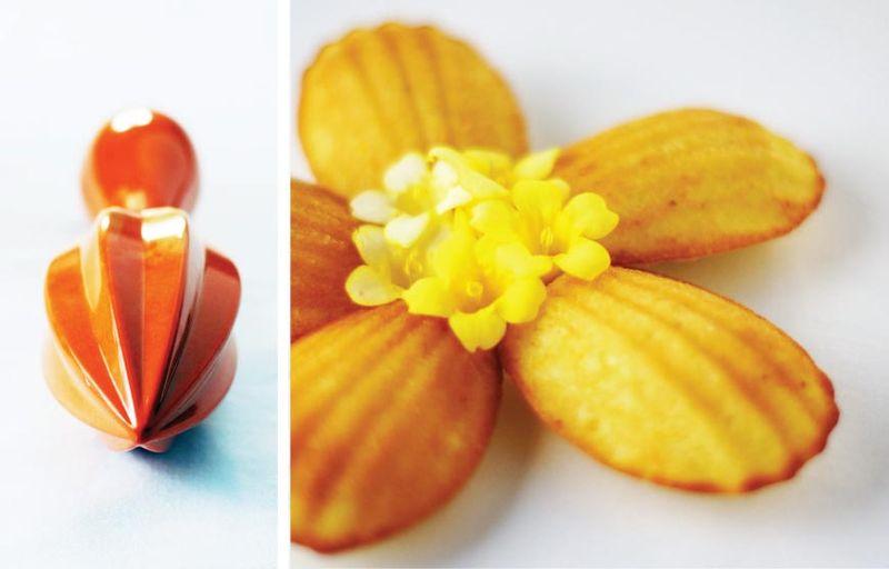 treat-of-the-week-orange-anise-madeleines4.jpg