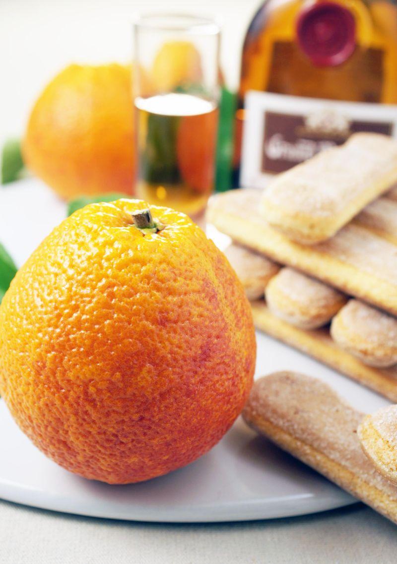 treat-of-the-week-pomegranate-blood-orange-tiramisu2.jpg