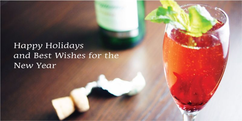 holiday-cocktail-gingle-fizz3.jpg