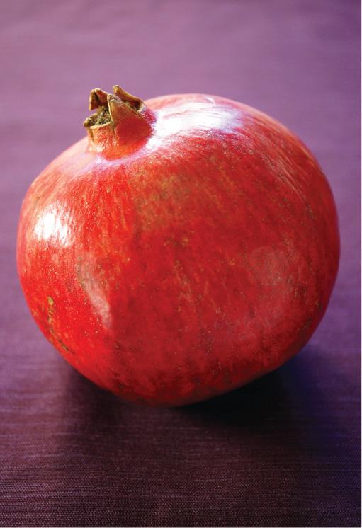 fall-salad-pomegranate-feta3.jpg
