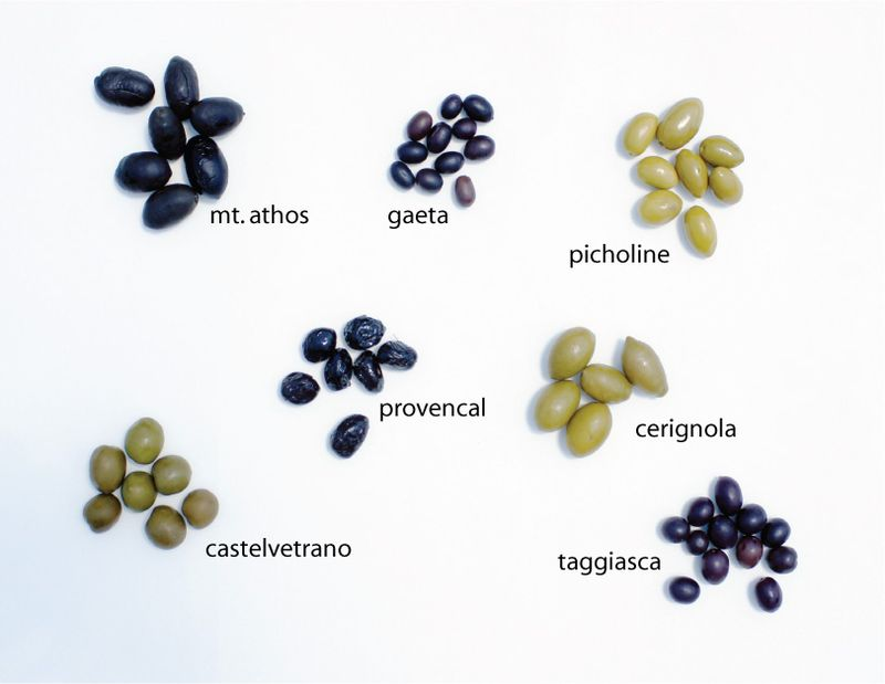know-your-food-olives3.jpg