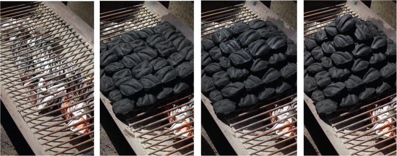 flame-on-grilling-basics2.jpg