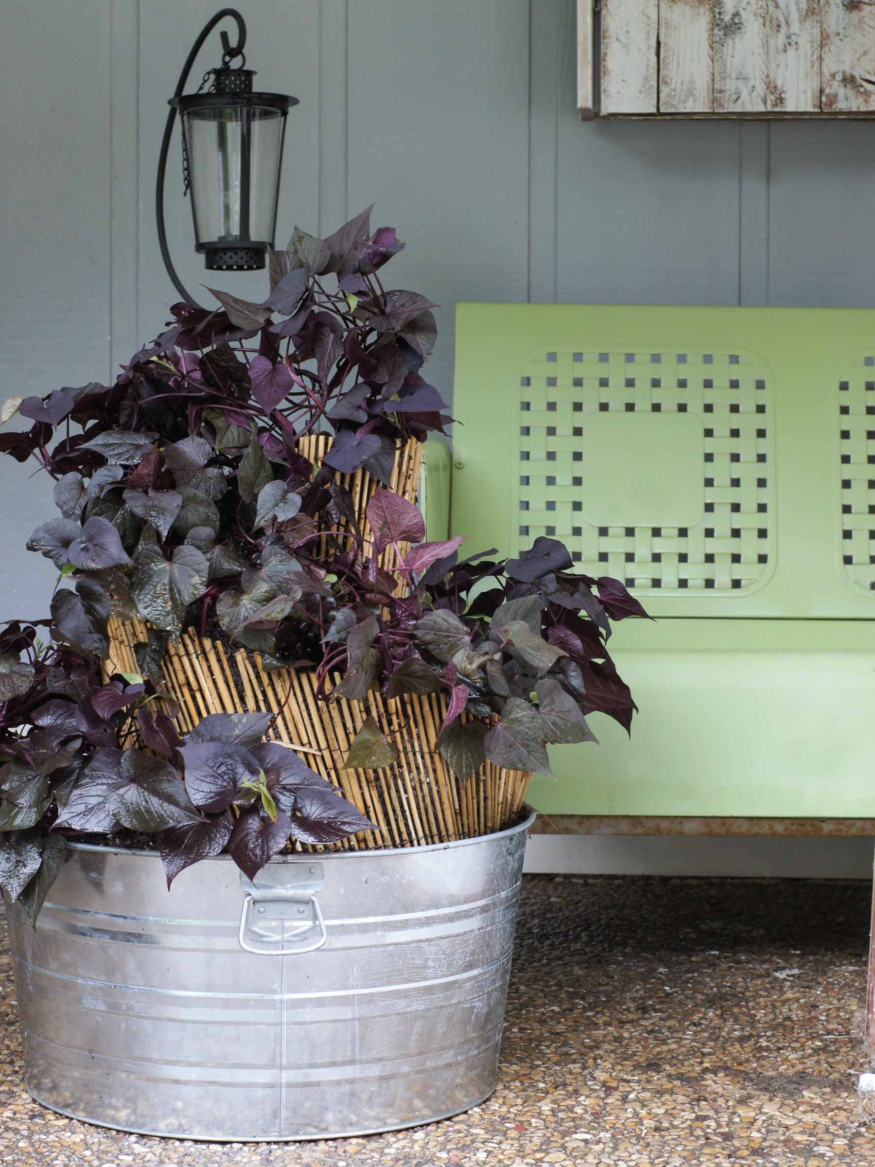 Spiral Patio Planter by Sam Henderson of Today's Nest for HGTVGardens