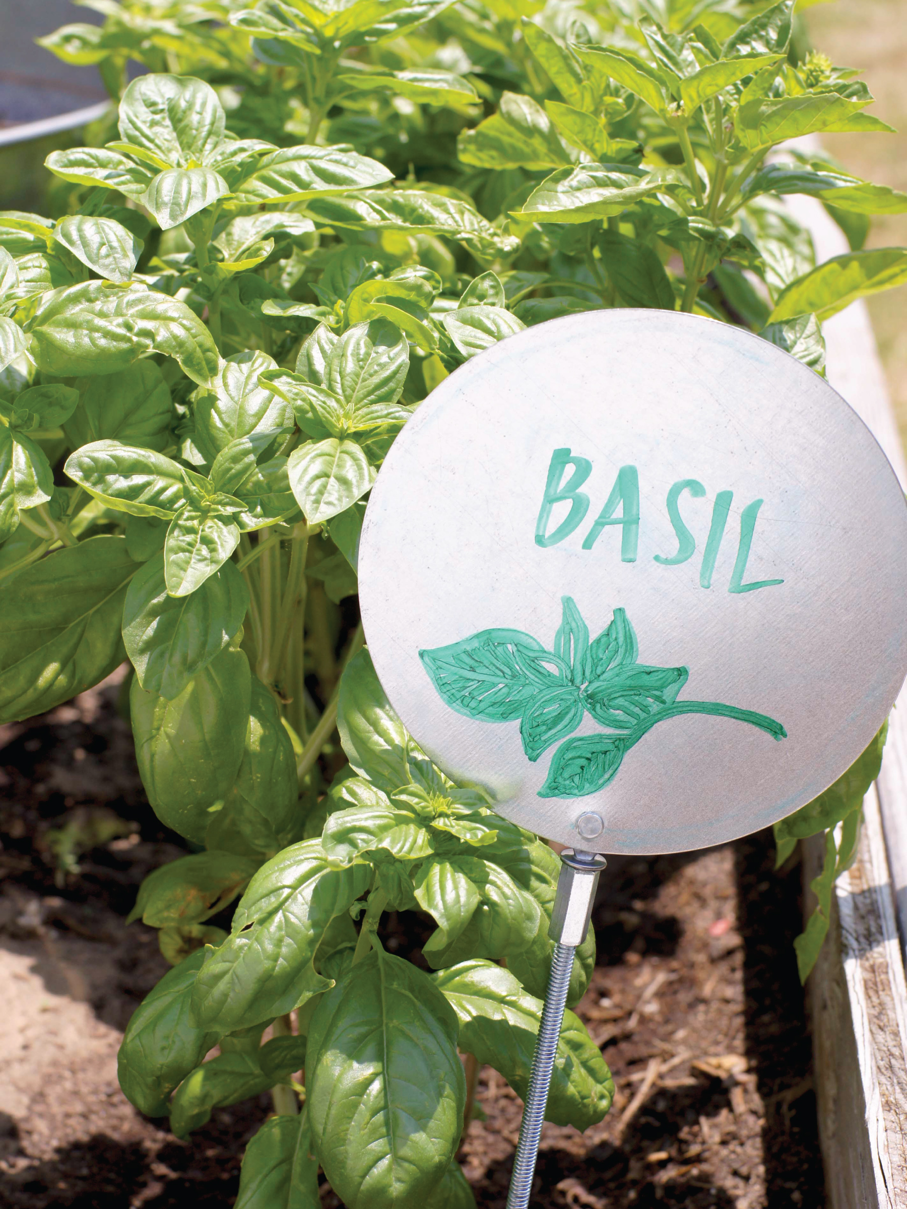 Industrial Flair Garden Markers by Sam Henderson of Today's Nest for HGTV Gardens.