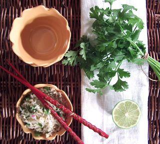 super-sidekick-cilantro-lime-rice2.jpg