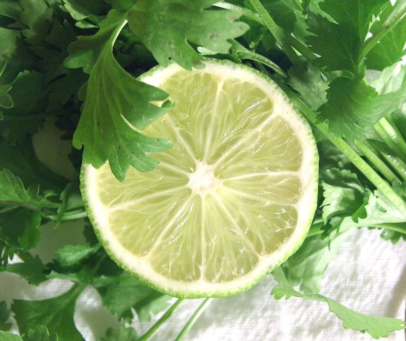 super-sidekick-cilantro-lime-rice3.jpg