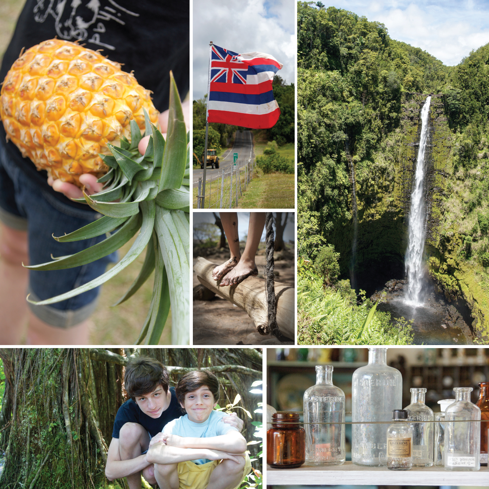 Sandy feet, glass collecting, and the best pineapple I've ever eaten on our way to Akaka Falls.