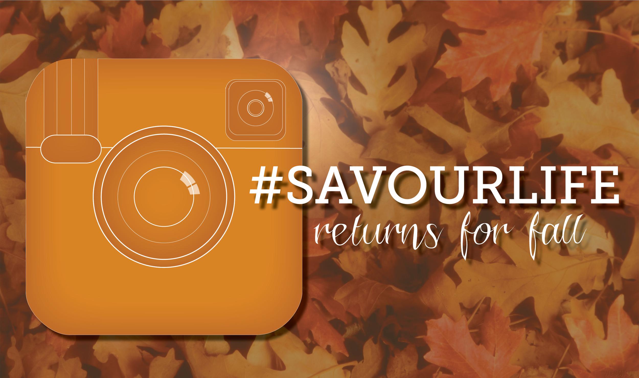fall-savour-life.jpg