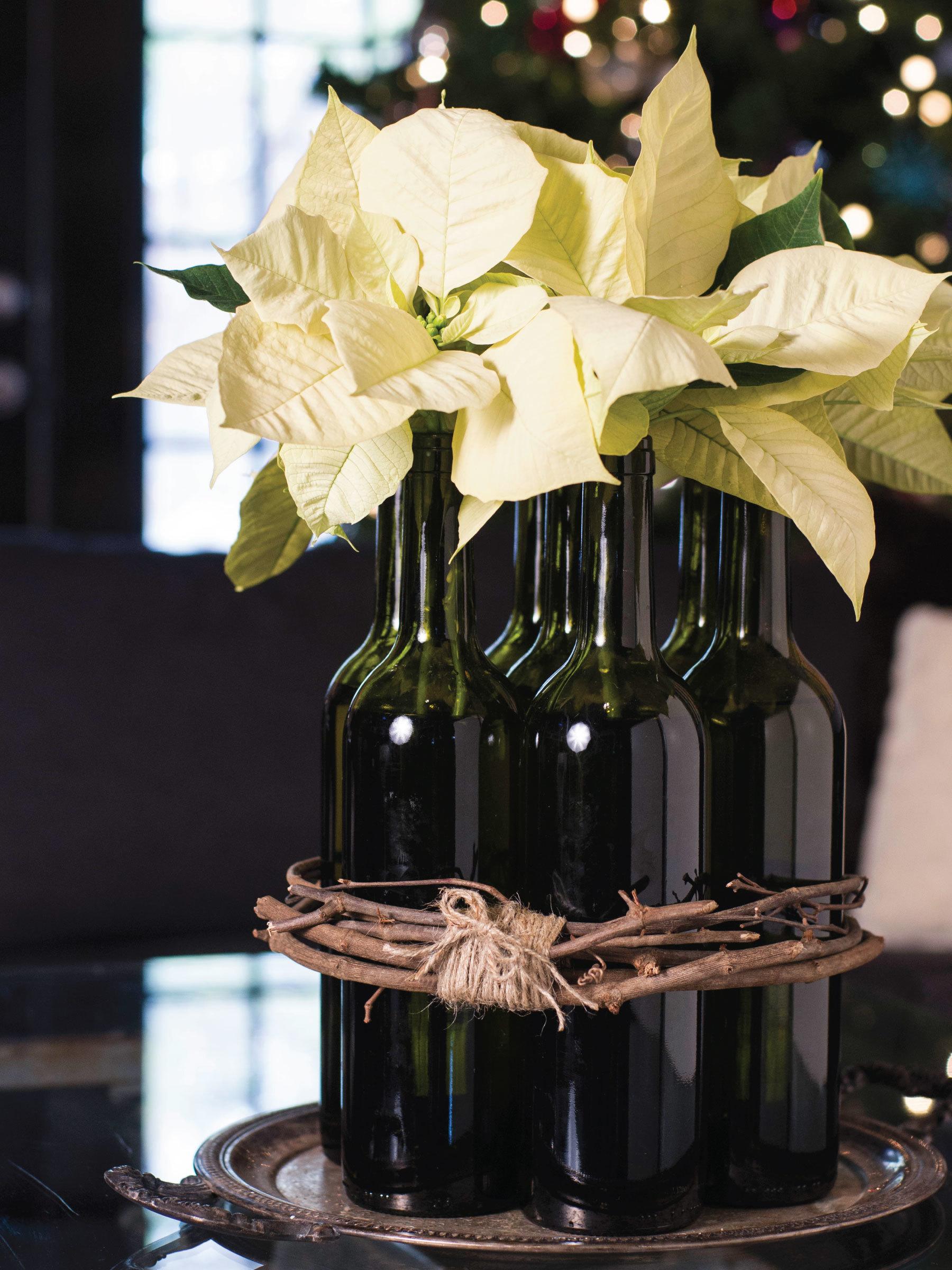 Poinsettia Arrangement by Sam Henderson of Today's Nest for HGTVGardens.