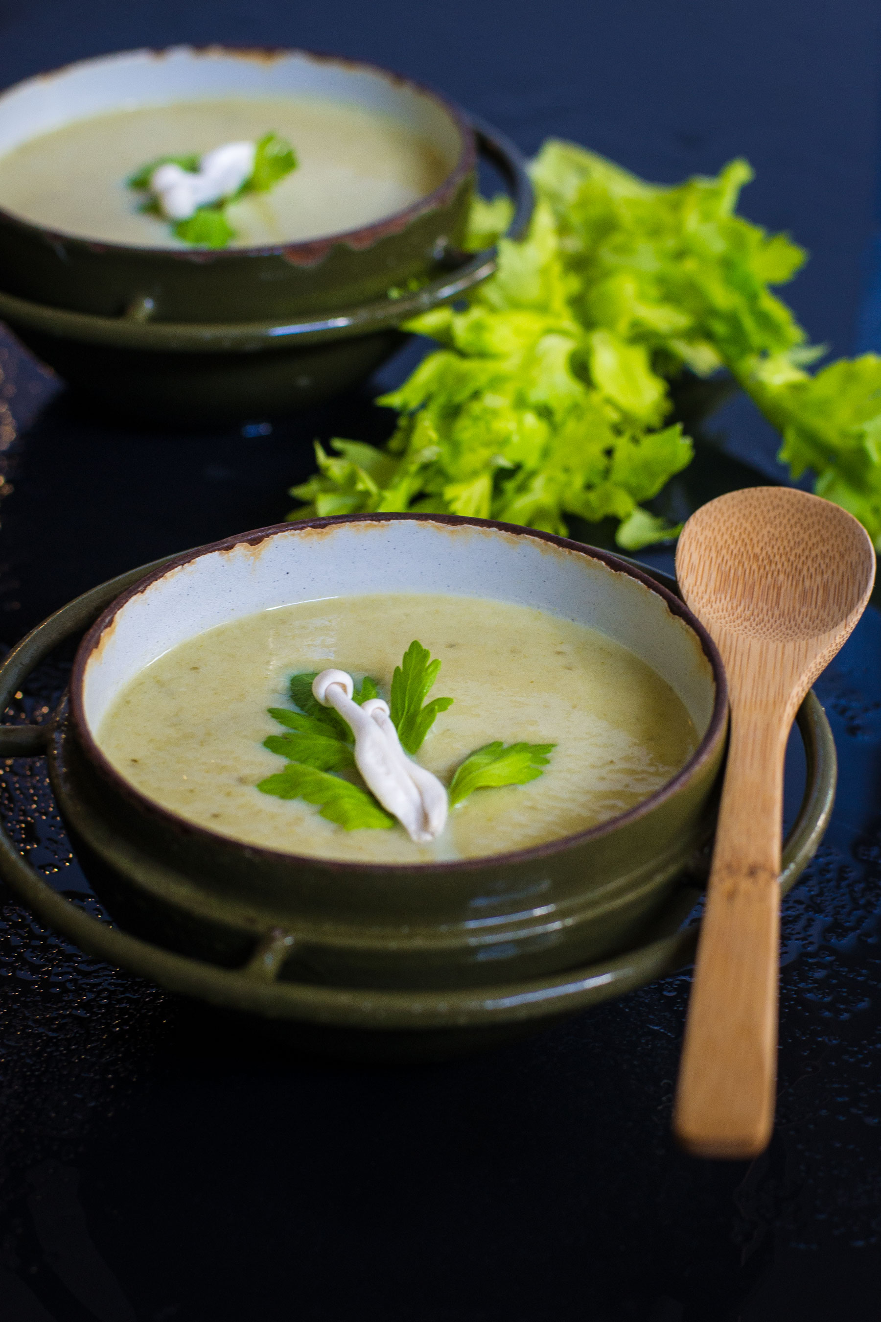 Creamy Celery Leek Soup by Sam Henderson of Today's Nest