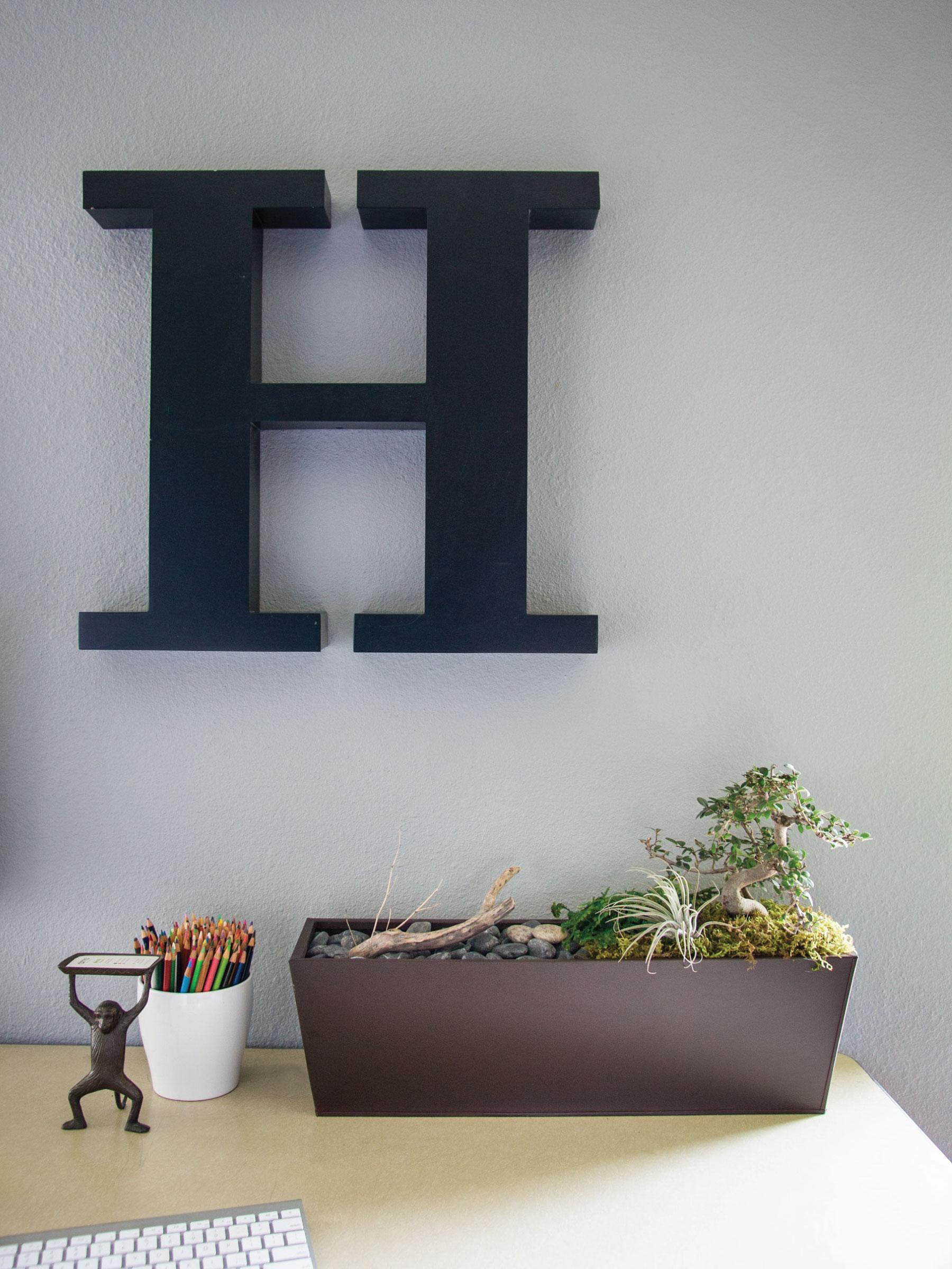 Desktop Garden Oasis by Sam Henderson of Today's Nest for HGTVGardens