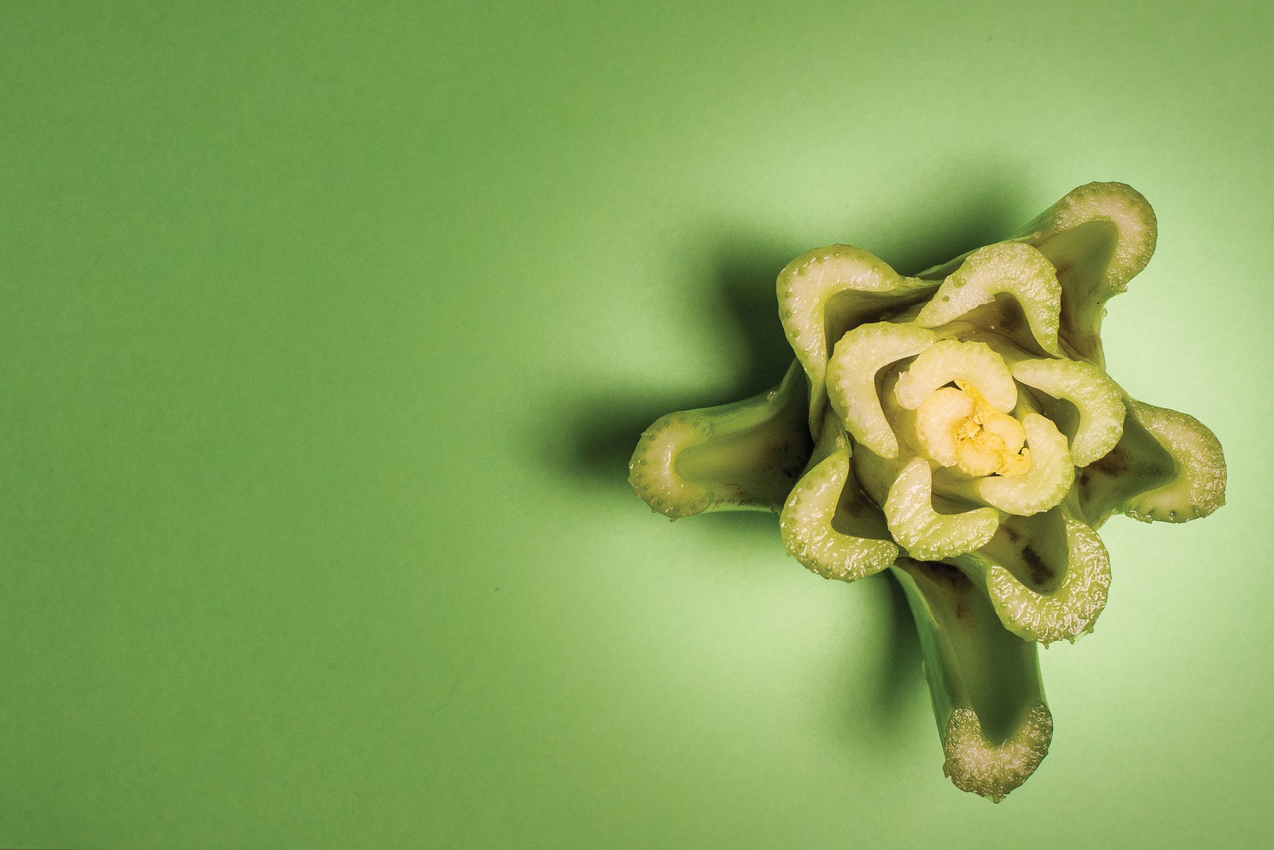 Celery green by Sam Henderson of Today's Nest