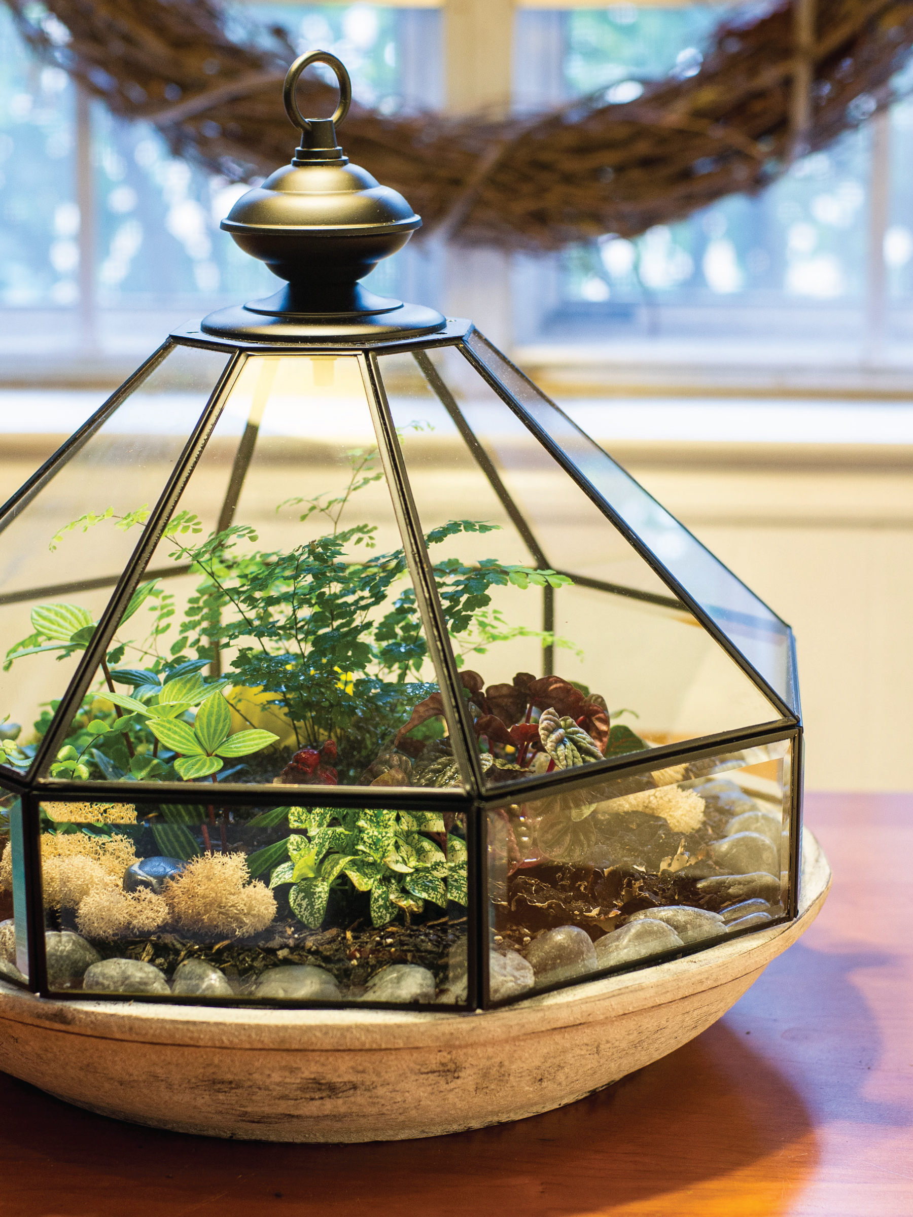 Upcycled Light Fixture Terrarium by Sam Henderson of Today's Nest for HGTVGardens.