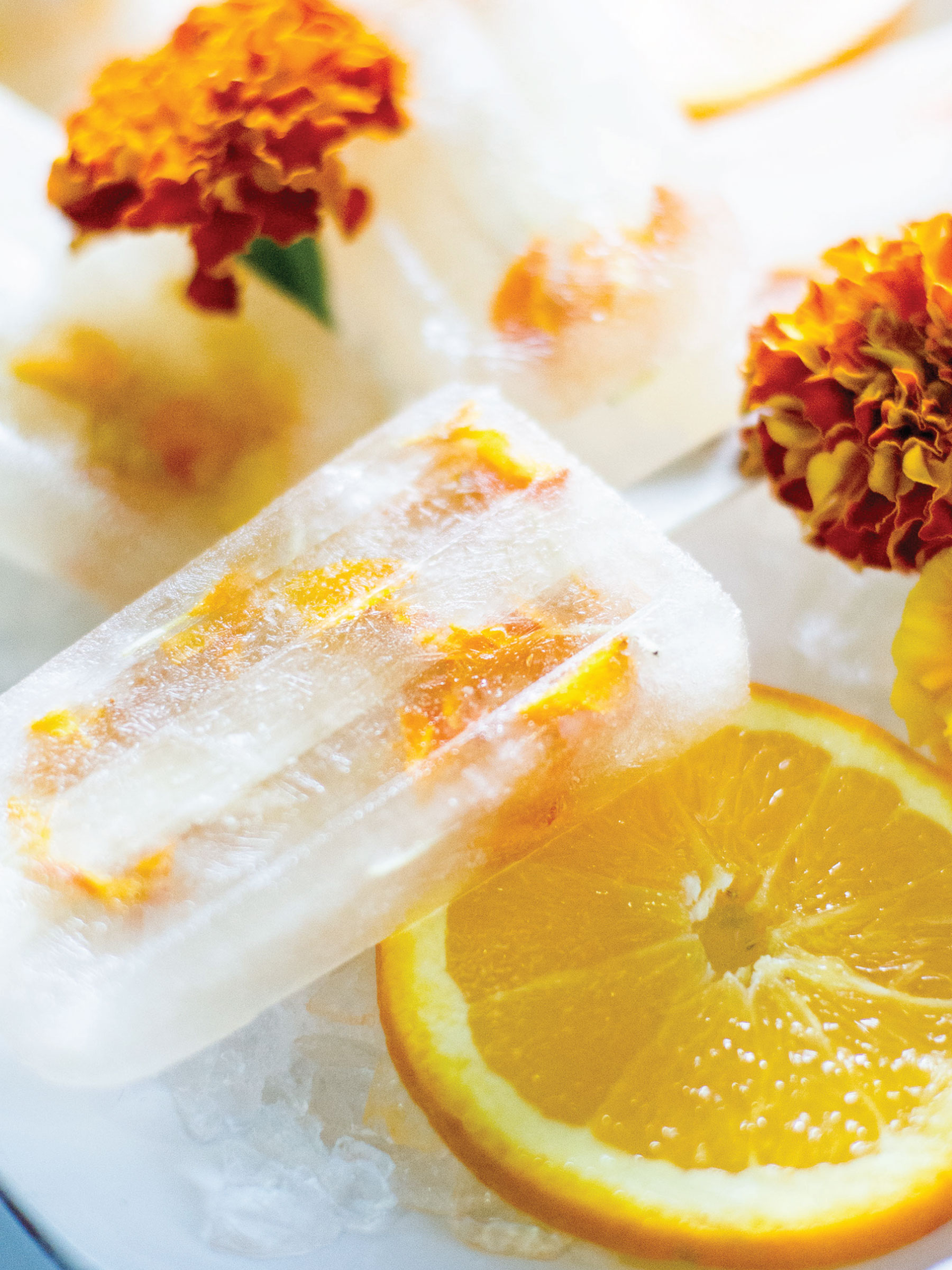 Citrus Marigold Popsicles by Sam Henderson of Today's Nest for HGTVGardens