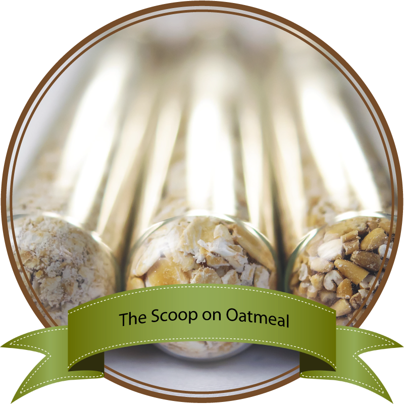 Oatmeal facts by Sam Henderson of Today's Nest